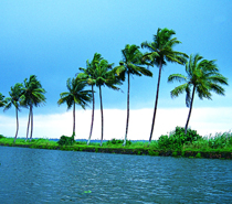Golden Triangle With Kerala Tour from Delhi